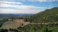 Cellers: paisatge  Ramon Sunyer