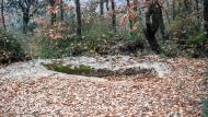 Vallferosa: Tomba altmedieval a Mas Vilella  Ramon Sunyer