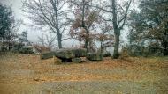 Vallferosa: taula pedra  Ramon Sunyer