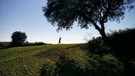Vicfred: passejant  Ramon Sunyer
