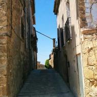Plandogau: carrer  Ramon Sunyer