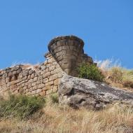 Sanaüja: el castell  Ramon Sunyer