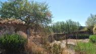 Llobera: bassa  Ramon Sunyer