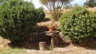Peracamps: jardí  Ramon Sunyer