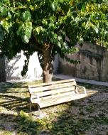 Castellfollit de Riubregós: parc  Ramon Sunyer