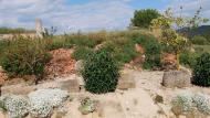 Els Quadrells: jardinet  Ramon Sunyer
