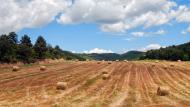 Els Quadrells: paisatge  Ramon Sunyer