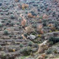 Sanaüja: Camí dels Escots  Ramon Sunyer