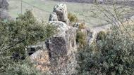 Oliola: cementiri  Ramon Sunyer