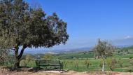 Selvanera: mirador de mas Ramon  Ramon Sunyer