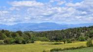 Prades de la Molsosa: paisatge  Ramon Sunyer