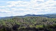 Torà: paisatge als Empalous  Ramon Sunyer