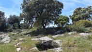 Biosca: Mas Pedrafita  Ramon Sunyer