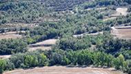 Biosca: Ribera del Llobregós  Ramon Sunyer
