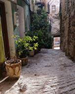 Torà: vila vella  Ramon Sunyer