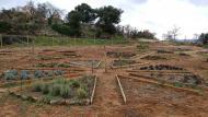 Claret: parc de les olors  Ramon Sunyer