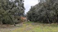 Sant Serni:   Ramon Sunyer