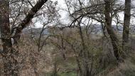 Torà: paisatge  Ramon Sunyer