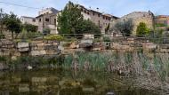 Coscó: bassa  Ramon Sunyer