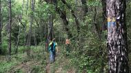Fontanet: Caminant a la font de Ternàs  APACTorà