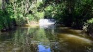 Puig-Arner: Peixera del molí del Cava  Ramon Sunyer
