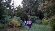 Sanaüja: Passejant pel Llobregós  Ramon Sunyer