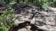Ardèvol: Dolmen de la Pera  Ramon Sunyer