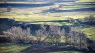 L'Aguda: paisatge del Llobregós  Ramon Sunyer