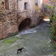 Biosca: vila vella  Ramon Sunyer