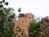 Vallferosa: tower Vallferossa  moix