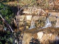 Torà: Riu  josep Gatnau