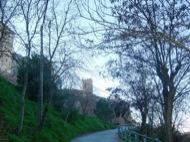 Torà: Camí del cementiri  Josep Gatnau