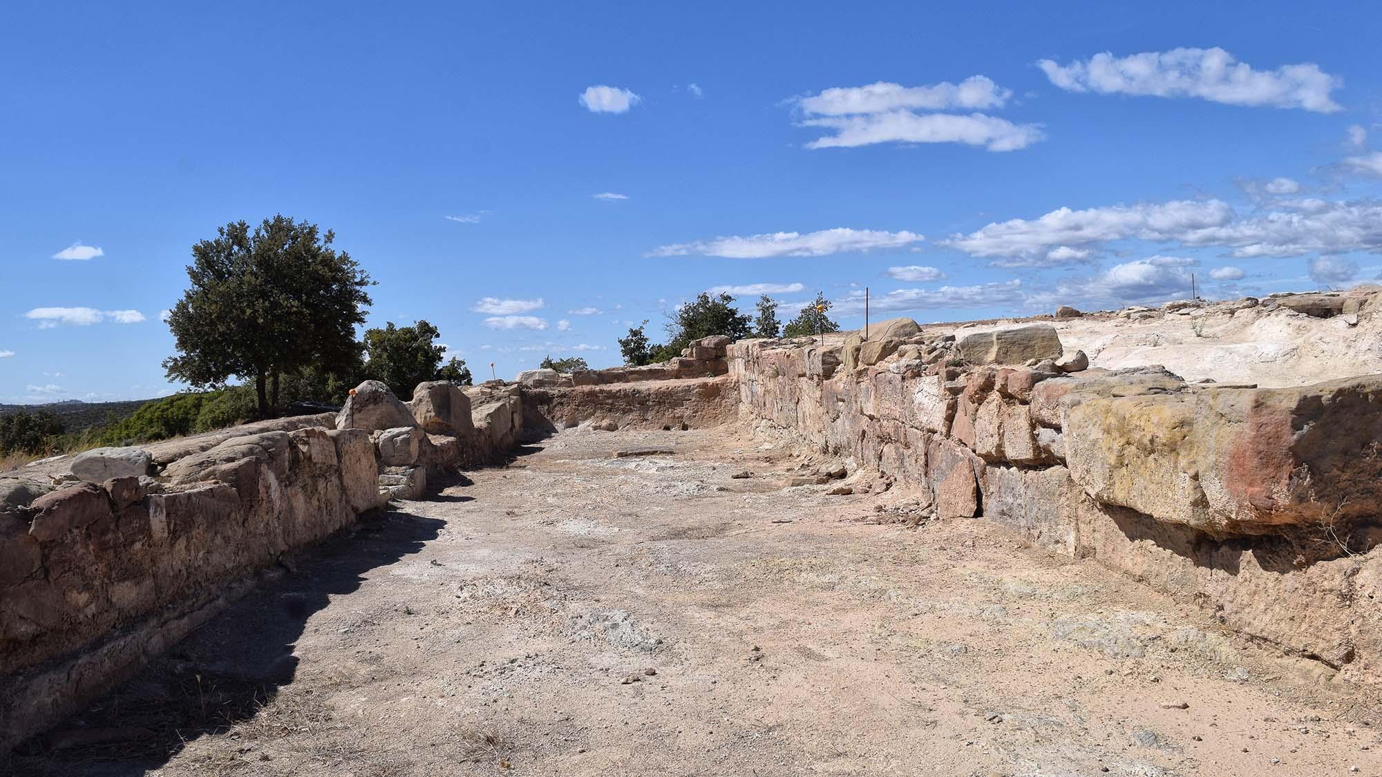 Site romain Puig Castellar