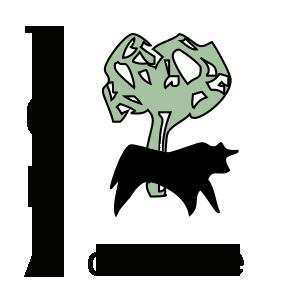 Torà on-line